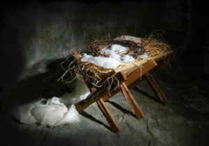 crown of thorns in the manger
