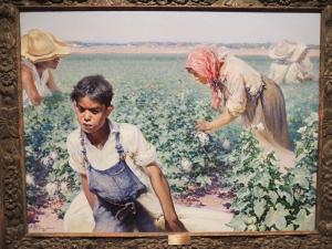 Picking Cotton 2