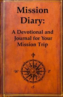 Diary Cover new